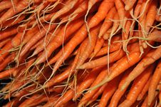 Free Fresh Carrots Stock Image - 20922181