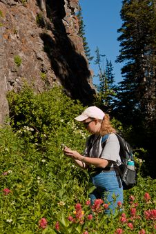 Free Woman Searching For A Geocache Stock Image - 20923151