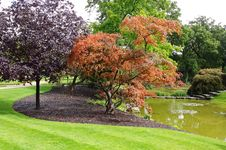 Free An English Landscaped Garden And Lake Stock Photo - 20923540