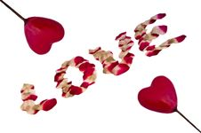 Free Love Roses And Hearts Royalty Free Stock Photos - 20924678