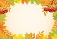 Free Autumn Background With Maple Leaves And Rowanberry Stock Photo - 20925920
