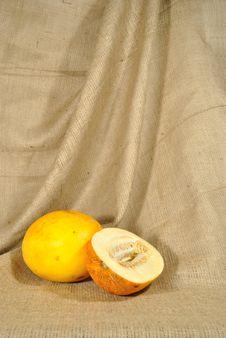 Free The Orange Melon Against Rough Stuff Stock Photos - 20927033