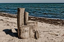 Free Beach Chairs Stock Images - 20927744