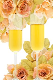 Free Champagne Stock Photos - 20927793