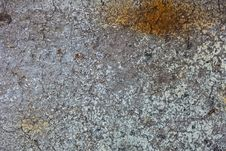 Free Concrete Texture Stock Photography - 20929972
