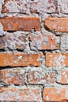 Free Concrete Texture Royalty Free Stock Images - 20930119