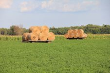 Free Hay Wagon Stock Images - 20930504
