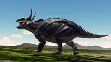 Free Dinosaur Stock Photos - 20930713