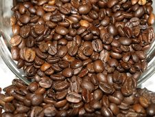 Free Coffee Beans Royalty Free Stock Photography - 20931447