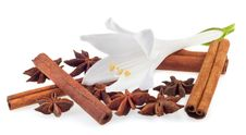 Free Aromatic Spices Stock Photos - 20932573