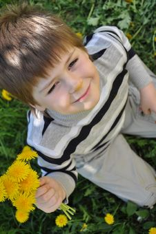 Free A Boy With A  Dandelions Stock Photo - 20932930