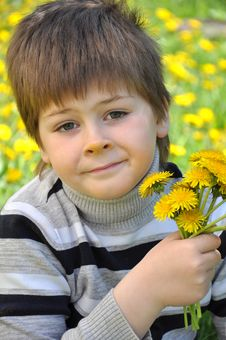 Free A Boy With A  Dandelions Royalty Free Stock Photo - 20932945