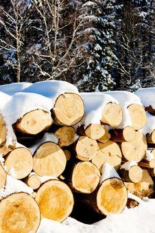 Free Logs Royalty Free Stock Photos - 20933508