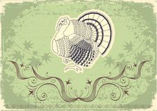 Free Thanksgiving Decoration Postcard Royalty Free Stock Photo - 20935895