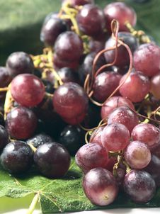Free Red Grapes On A Leaf Stock Photography - 20938902