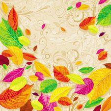 Free Seasonal Autumn Leaves Background Stock Images - 20939304