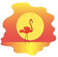 Free Flamingo Stock Image - 20939431