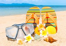 Free Seashells And Diving Mask On The Sand. Royalty Free Stock Images - 20943169