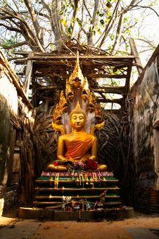 Ancient Buddha Statue Stock Photos