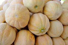 Free Cantelopes Royalty Free Stock Photo - 20944265