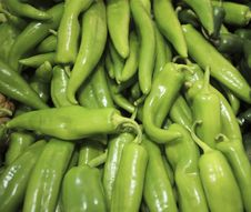 Free Green Peppers Royalty Free Stock Images - 20949209