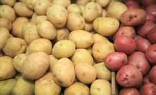 Free Potatoes Red & White Stock Photography - 20949232