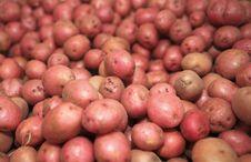 Free Potatoes Red Stock Photos - 20949233