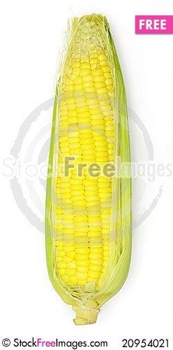 Free Corn Stock Image - 20954021
