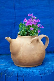 Free Kettle With Flowers Stock Photo - 20950370