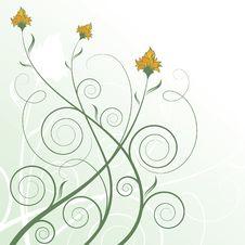 Free Floral Design Royalty Free Stock Photos - 20951678