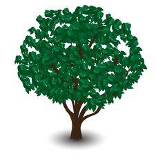 Free Vector Green Tree Stock Image - 20953881