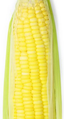 Free Corn Stock Photo - 20953990