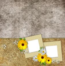 Free Frames And Flowers On Vintage Background Royalty Free Stock Image - 20955166