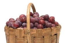 Free Crop Of Plums. Royalty Free Stock Photos - 20955628
