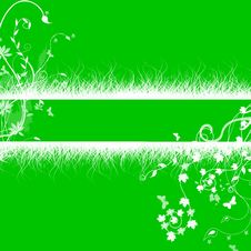 Free White Grass Floral  Patterns On Green Background Stock Photo - 20955670