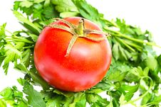 Free Fresh Tomato And Parsley On A White Stock Image - 20955681