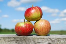 Stack Of Apples Royalty Free Stock Photography