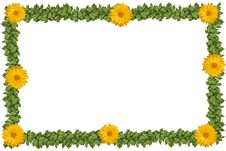Free Green Plant Frame With Flowers Stock Photo - 20957360