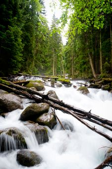 Free Falls In Wood, The Mountain River Royalty Free Stock Photos - 20959898