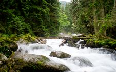 Free Extreme Falls In Forest, The Mountain River Stock Photo - 20959960