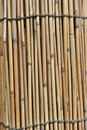 Free Bamboo Fence Stock Photography - 20962022