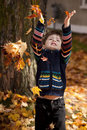 Free Little Boy Playing In Leaves Stock Image - 20968291
