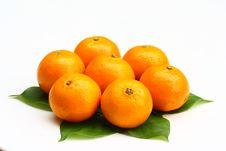 Free Orange Stock Images - 20960164
