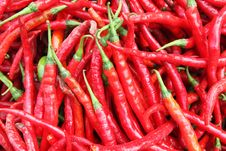 Free Hot Pepper Stock Image - 20960591