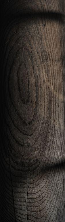 Free Wood Log Stock Images - 20961894
