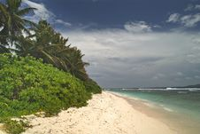 Free Tropical Landscape Royalty Free Stock Photography - 20962437