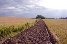 Free Tillage Trench In The Crop Field Royalty Free Stock Image - 20963856