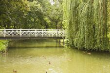 Free Bridge In Park Royalty Free Stock Photos - 20964758