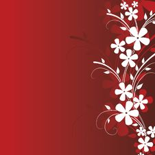 Free Floral Design. Vector Illustration Stock Images - 20965294