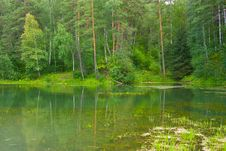 Free Lake In Forest Royalty Free Stock Photos - 20965558